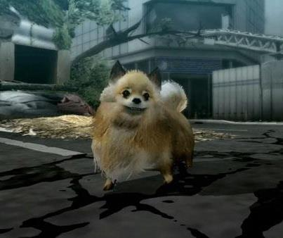 pomeranian CU A viking, dog, princess and circle walk into the Best of Playstation Network Volume 1 review