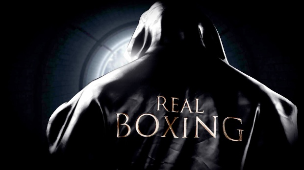 real boxing Not quite worth the purse   Real Boxing review