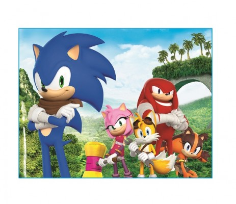 Sega Reveals Sticks, a New Character in Sonic Boom