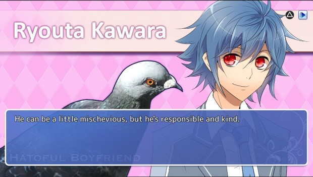 Each character gets a human portrait alongside their actual pigeon body.