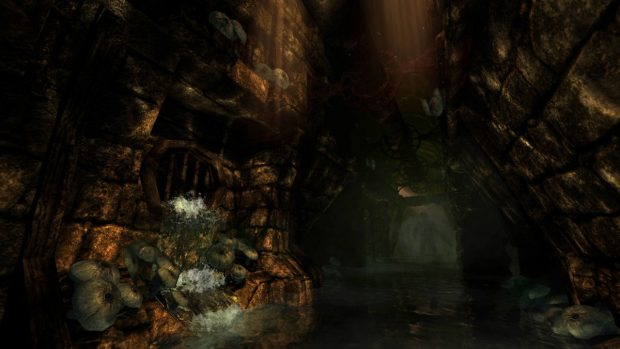 While by no means ugly, The Dark Descent is six years old and showing it's age.