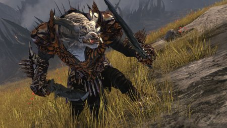 Guild Wars 2 – Hands on Preview #1 – GAMING TREND