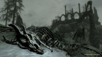 dragonskeleton