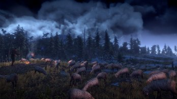 4_The_Witcher_3_Wild_Hunt_Sheep