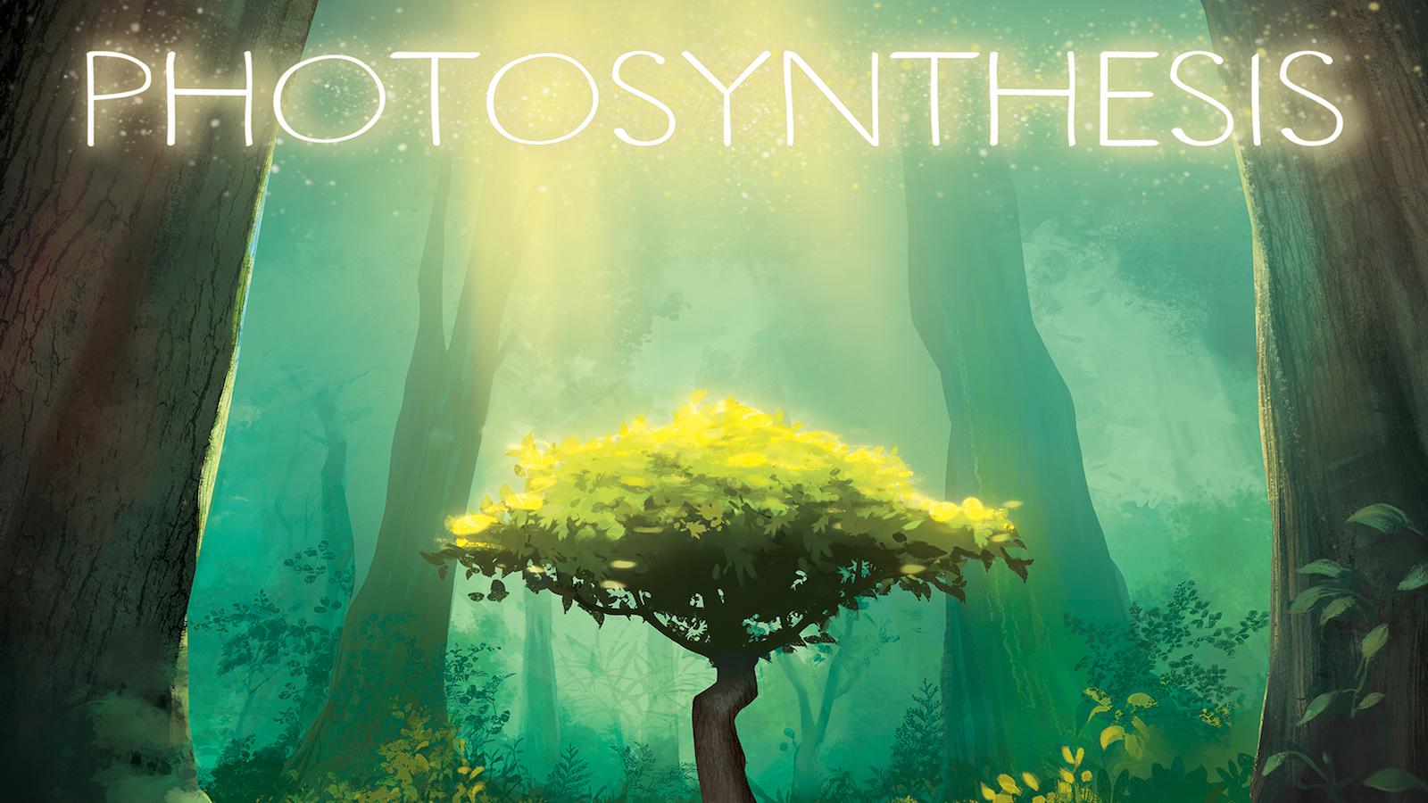 Blue Orange Photosynthesis Family Game