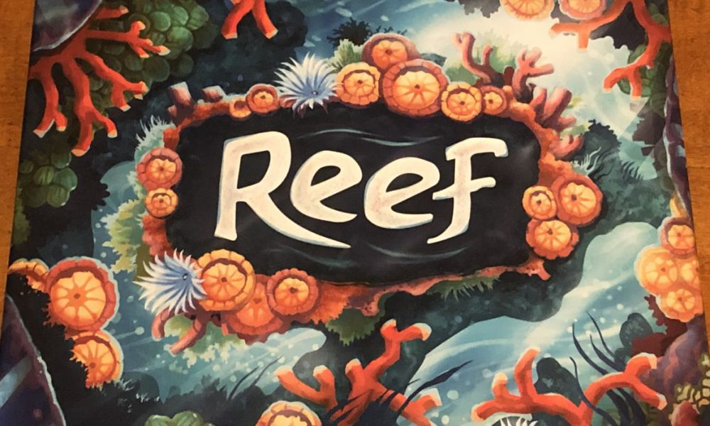 Under the sea — Reef review image